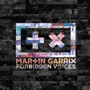 Forbidden Voices/Martin Garrix