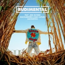 These Days (feat. Jess Glynne, Macklemore & Dan Caplen) [Acoustic]/Rudimental