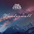 Wonderwall (feat. Emelie Cyréus)/Chad Cooper & Robaer