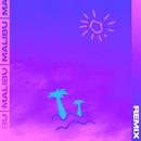Malibu (Le Boeuf Remix)/Skinz