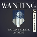 You Can't Hurt Me Anymore (Napa Cabbage Remix)/Wanting