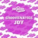 Joy (The Remixes)/Groovenatics
