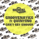 Can't Get Enough (feat. Quintino)/Groovenatics