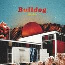 Bulldog/Soleima