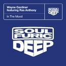 In The Mood (feat. Ras Anthony)/Wayne Gardiner