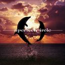 So Long, And Thanks For All The Fish/A Perfect Circle