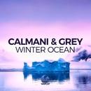 Winter Ocean/Calmani & Grey