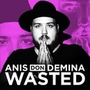 Wasted/Anis Don Demina