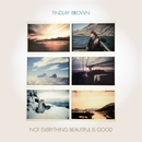 Not Everything Beautiful Is Good/Findlay Brown