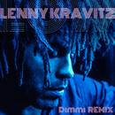 Low (Domenico Torti Remix)/Lenny Kravitz