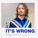 It's Wrong (feat. Danny Dearden)/Michael Calfan