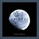 Bridges Collection/Aisha Badru