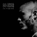 Welcome To The Rodeo/Lil Skies