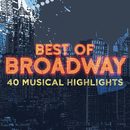 Best of Broadway: 40 Musical Highlights/Various Artists