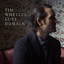 LOST DOMAIN/TIM WHEELER