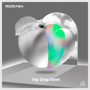 Trip Drop Town/RADIO FISH