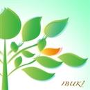 IBUKI/healing shop YUNICA