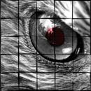 eyes/TOKYO BEAT SOCIETY