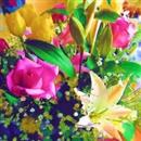 追憶/Skyblue Spring