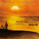 琥珀の海/Harvest Time