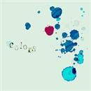 colors/骨盤P
