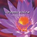 aroma voice/arovo L