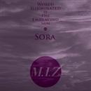 太陽が照らす世界~Sora~/M.I.Z.