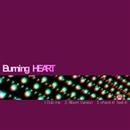 BurNing HeaRt OTHER MIXES/U-ji aka 霊長類P