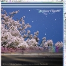 Brilliant Flowers/Takuma Iwakawa