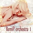 RemiP orchestra I/RemiP