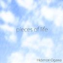 pieces of life/Hidenori Ogawa