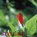 In The Red/STYLE-K4