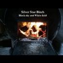 Black sky and White field/Silver Star Birch