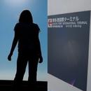 SUNSET STORY/MEIKO