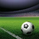 オルゴール 「2014 サッカー W杯 ブラジル」 特集!/オルゴール ミドリ