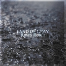 LAND OF GRAY/Ames Room