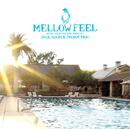 Soul Source Production presents Mellow Feel/Soul Source Production