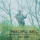 PEACEFUL BIRDS/吉野悟