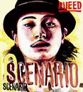 SCENARIO/RUEED
