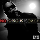 NOTORIOUS IS BACK!/KNZZ