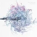 Phenomenon/Paradrags