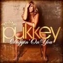 Diggin' On You/pukkey