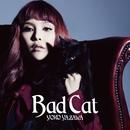 Bad Cat/矢沢洋子