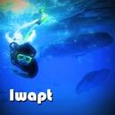 Jellyfish of Company/iwapt