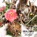 Real Times Rares&Remixes/Why Sheep?