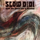 WHAT YOU SEE IN SOUL IS RAINBOW/SLOW DIDI