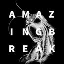 AMAZING BREAK/TERRASPEX