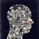 COMPLETED TUNING INSTRUMENTALS/LIBRO