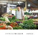 ゴマサバと夕顔と空心菜/HARCO