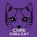CURE/CHILL CAT